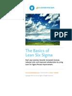 The-Basics-of-Lean-Six-Sigma-www.GoLeanSixSigma.com_.pdf