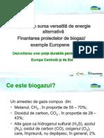 2_Biogazul o sursa versatila de energie.pdf