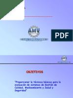 Capitulo v Auditores Internos SSO (2)