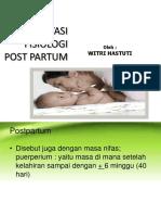 ADAPTASI Fisiologik Post Partum