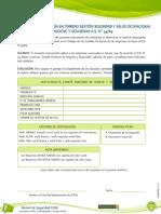 Formulario Auditoria Terreno CPHS DS N° 5469