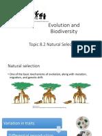 8.2 Natural Selection