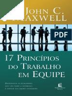 17 Principios do Trabalho em equipe.pdf