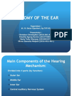 anatomy ear.ppt