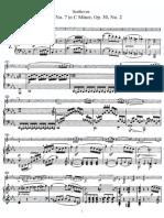 Sonata No. 7, Op. 30 No. 2 in C Minor - Beethoven