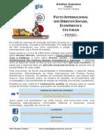 Pacto Internacional Dos Direitos Sociais Economicos e Culturais