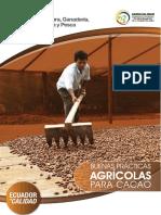 Guia BPA Cacao1