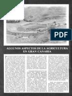 Algunos Aspectos de la Agricultura en Gran Canaria