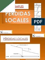 4. 03  PERDIDAS LOCALES.pdf