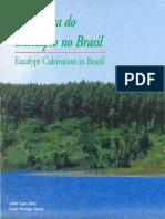 A Cultura Do Eucalipto No Brasil. IPEF Ademir L. Mora e Carlos H. Garcia, 2000, 114p