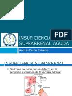 Insuficienciasuprarrenalaguda 150710150120 Lva1 App6891