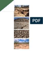 Características de Los Suelos Con Pérdida de Minerales Por La Lluvia