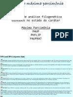 Aula 3 - Maxima Parcimonia.pdf