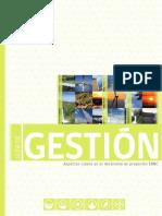 Guia de Gestion.pdf