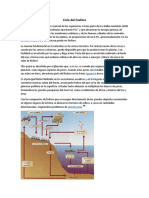 Ciclo-del-Fosforo.docx