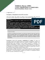 Terigi- Curriculum-Cap. I,II SELECCION
