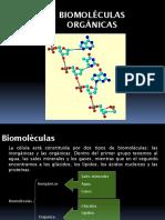 Biomoléculas-Organicas-2