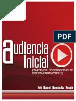 AUDIENCIA INICIAL - ERIK RAUDA (1).pdf