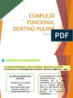 Complejo Funcional Dentino Pulpar