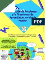Trastornos de Aprendizaje (DEA)