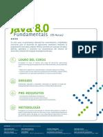 Java 8 0 Fundamental Developer