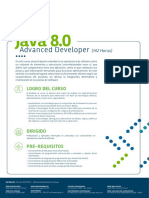 Java 8 0 Advanced Developer