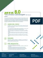 Java 8 0 Architect Developer