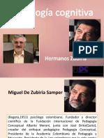 TEORIA HERMANOS ZUBIRIA.pdf