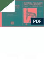 Anatomia Y Musculacion Para El Entrenamiento De La Fuerza Y La Condición Física.pdf