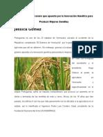 Agricultura en Portuguesa Reportaje