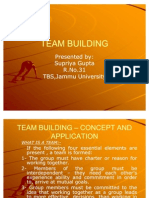 TEAM BUILDING – CONCEPT AND APPLICATION