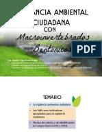 Vigilancia Ambiental con macroinvertebrados bentónicos