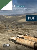 EDF State of Risk-Nevada Report