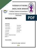 estesiologia