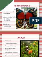las mariposas.ppt