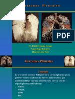 Derrames Pleurales Clase.juliO 2008. (PPTminimizer)