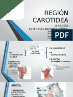 REGIÓN CAROTIDEA