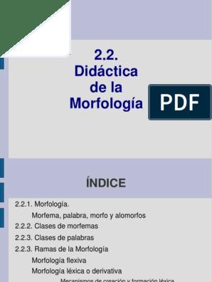 2 2 Didáctica De La Morfología