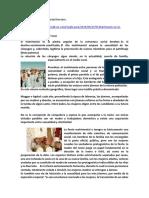 9_El Matrimonio en La Sociedad Bereber