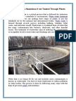Waste Water is Hazardous if Not Treated Through Plants (1)