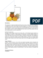 PINEAPPLE PRODUCTION.pdf