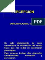 4. Procesos cognitivos.ppt