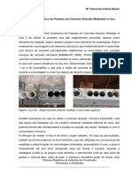 SISTEMA CONSTRUTIVO DE PAREDES EM CONCRETO ALVEOLAR MOLDADAS IN LOCO.pdf