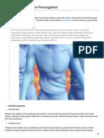 gastritis Etiologi Dan Pencegahan