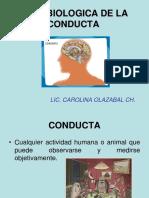Psicologia # 5