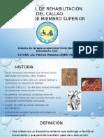 To Ortesis de Miembro Superior