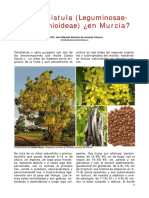 Cassia.pdf