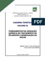 Fundamentos da Oxidação Química no Tratamento de Efluentes.pdf