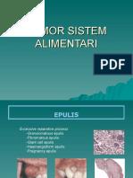 6a Tumor Sistem Alimentari