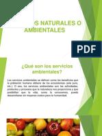 Servicios Naturales o Ambientales